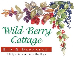 Wild Berry Cottage - Accommodation Directory