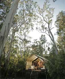 Paperbark Camp - Accommodation Directory