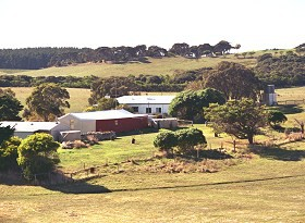 Sun Valley Eco Farm - Accommodation Directory