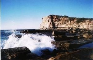 Terrigal Lagoon Bed and Breakfast - Accommodation Directory