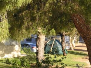 Barmera North Lake Caravan Park - Accommodation Directory