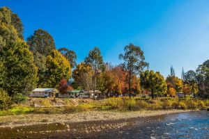 Porepunkah Bridge Holiday Park - Accommodation Directory