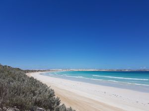 Coffin Bay National Park Campgrounds - Accommodation Directory