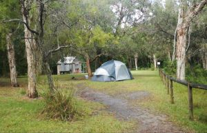 Kylies Hut walk-in campground - Accommodation Directory
