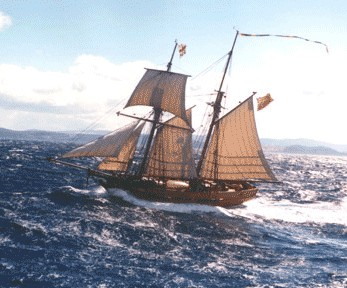 Enterprize - Melbourne's Tall Ship - Accommodation Directory