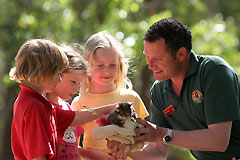 Cleland Wildlife Park - Accommodation Directory
