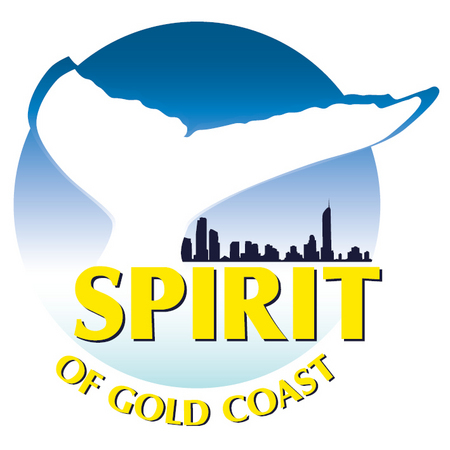 Spirit of Gold Coast Whale Watching - Accommodation Directory