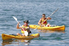 Manly Kayaks - Accommodation Directory