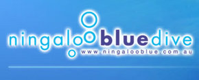 Ningaloo Blue Dive - Accommodation Directory