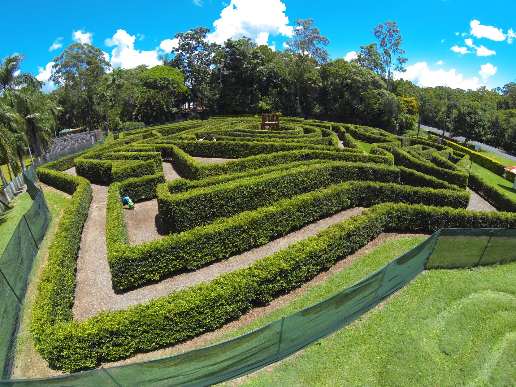 Bellingham Maze - Accommodation Directory