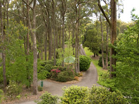 Mount Lofty Botanic Garden - Accommodation Directory