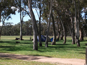 Black Cockatoo Bush Camp - Accommodation Directory