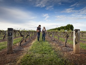 Coonawarra Wineries Walking Trail - Accommodation Directory