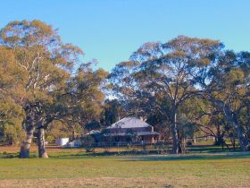 Old Wilpena Station - Accommodation Directory