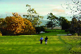 Quamby Golf and Country Club - Accommodation Directory
