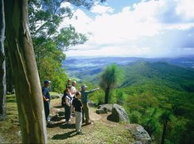 Gold Coast Hinterland Great Walk - Accommodation Directory