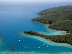 Butterfly Bay - Hook Island - Accommodation Directory