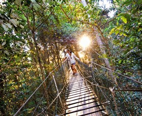 Tree Top Walkway - Accommodation Directory