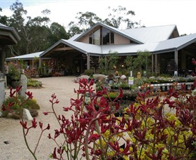 Kuranga Native Nursery and Paperbark Cafe - Accommodation Directory
