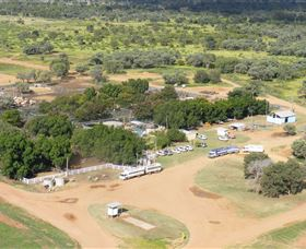 Blackall Saleyards - Accommodation Directory