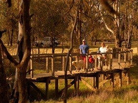Loxton's Drives Walks and Trails - Accommodation Directory