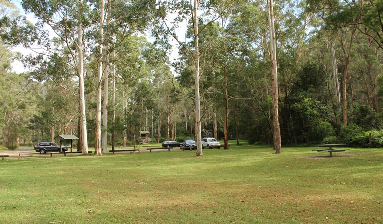 Mill Creek picnic area - Accommodation Directory