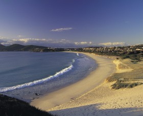 Forster Town Beach - Accommodation Directory