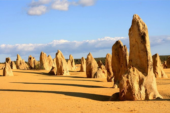 Pinnacles and Yanchep National Park Day Trip from Perth Including Lobster Shack Lunch and Sandboarding - Accommodation Directory