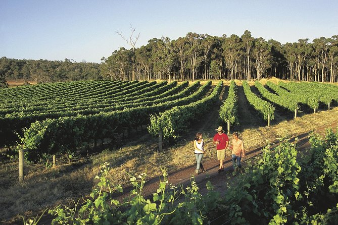 Margaret River Caves Wine and Cape Leeuwin Lighthouse Tour from Perth - Accommodation Directory