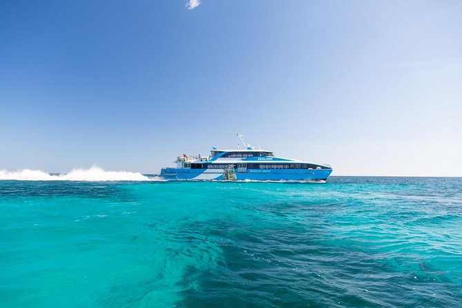 Fremantle to Rottnest Island Roundtrip Ferry Ticket - Accommodation Directory