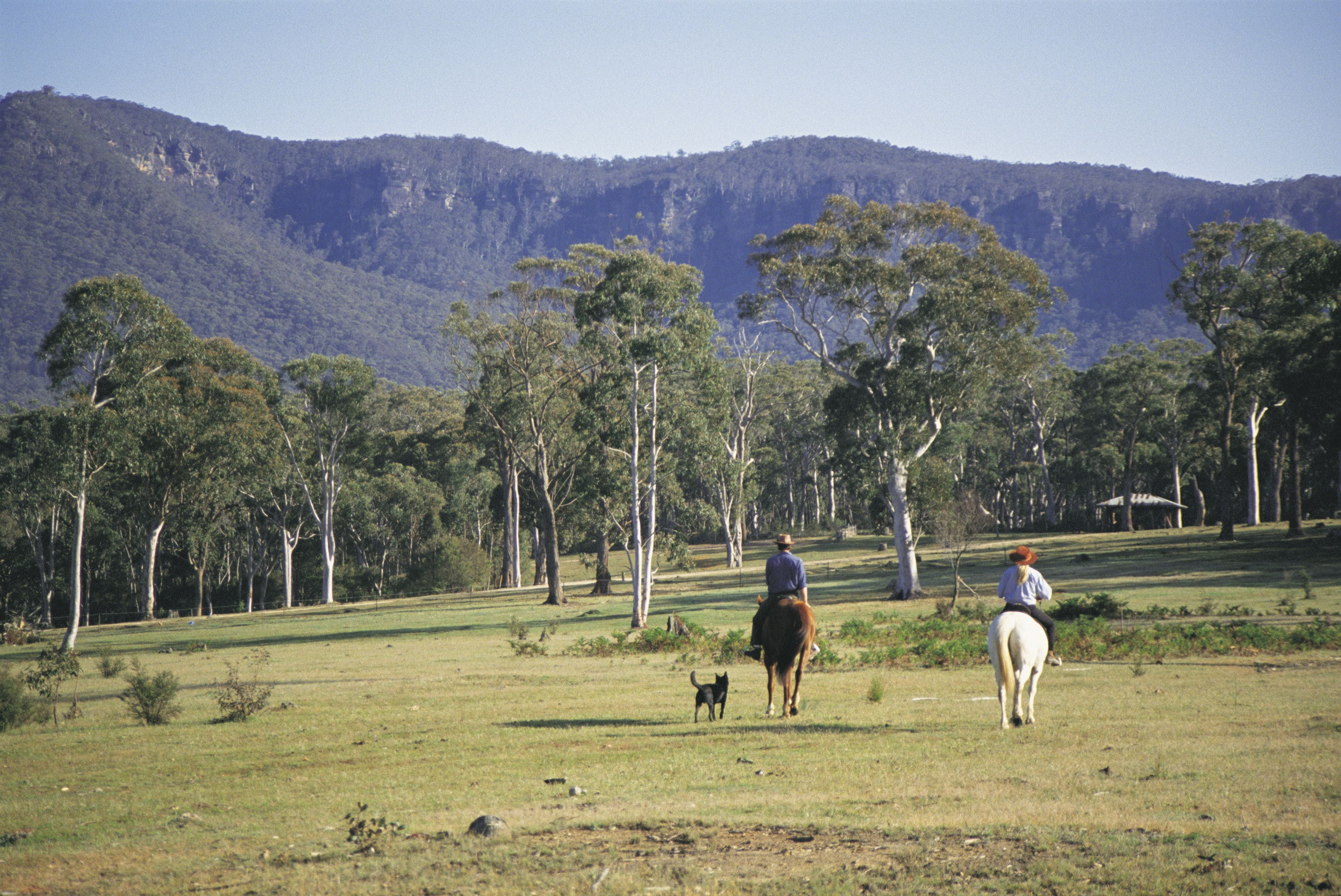 Megalong Valley - Accommodation Directory