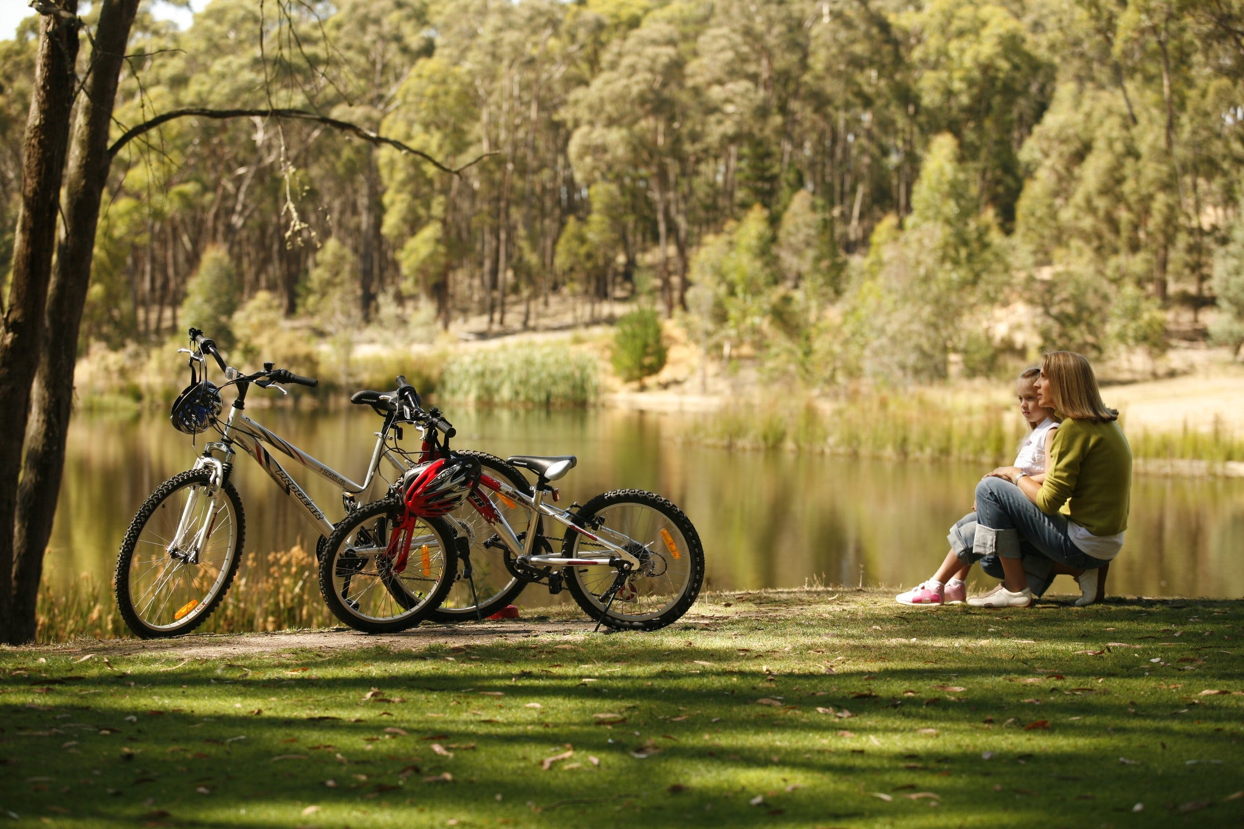 Creswick Regional Park - Accommodation Directory