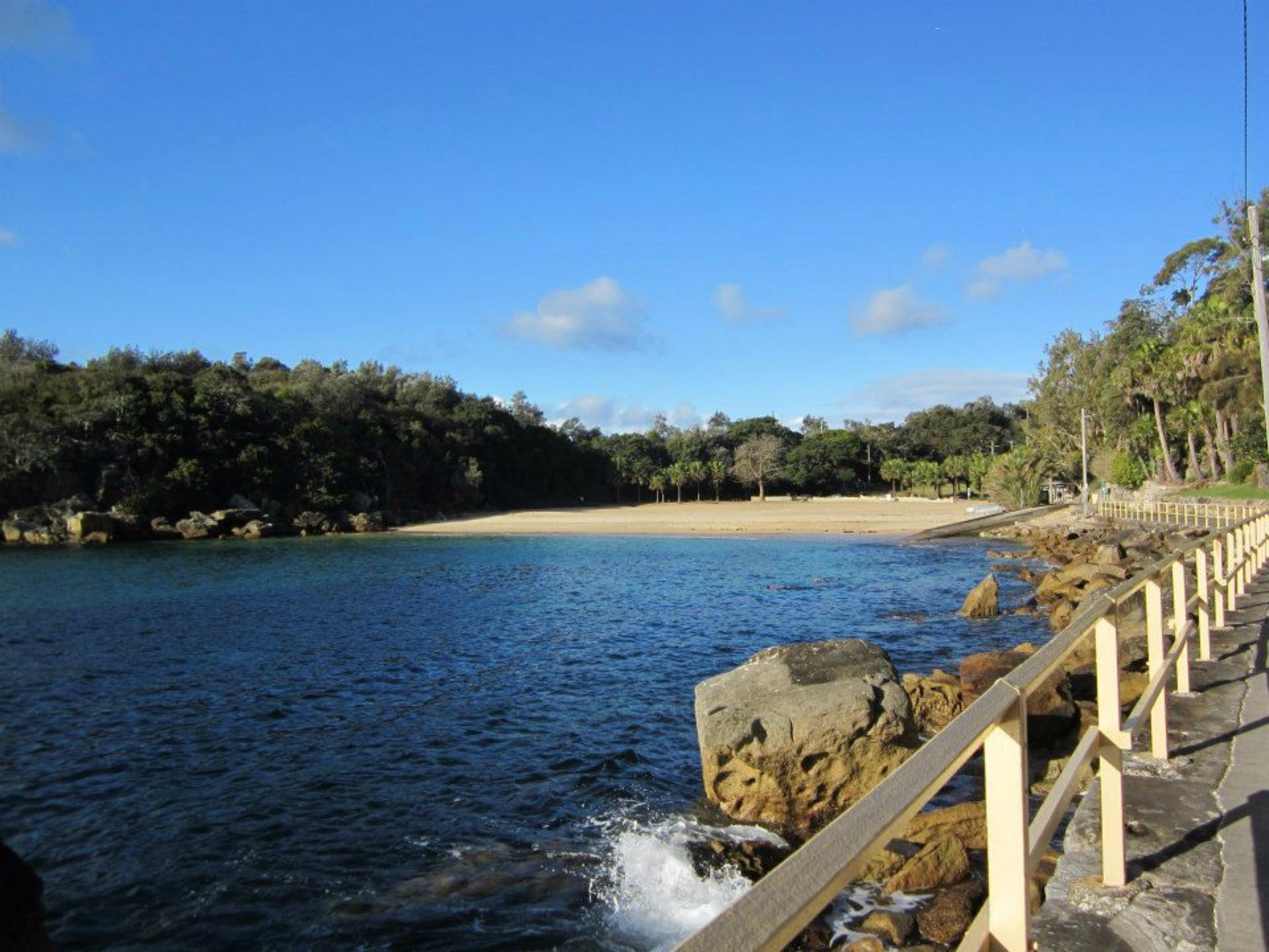 Shelly Beach Manly - Accommodation Directory