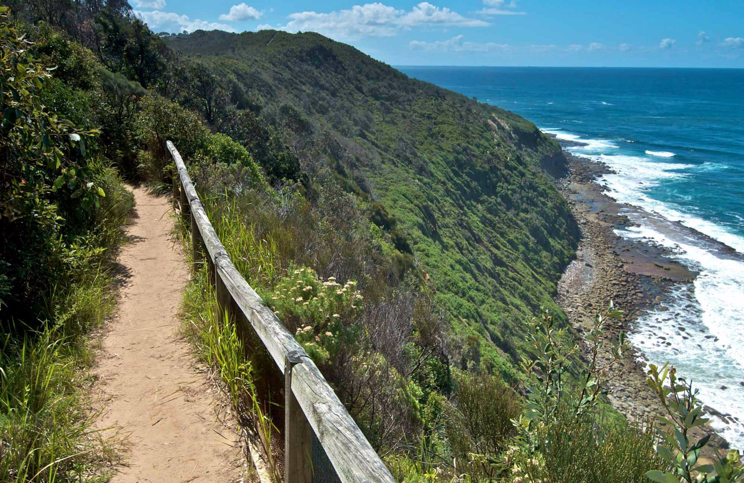 The Coast Walking Track - Accommodation Directory
