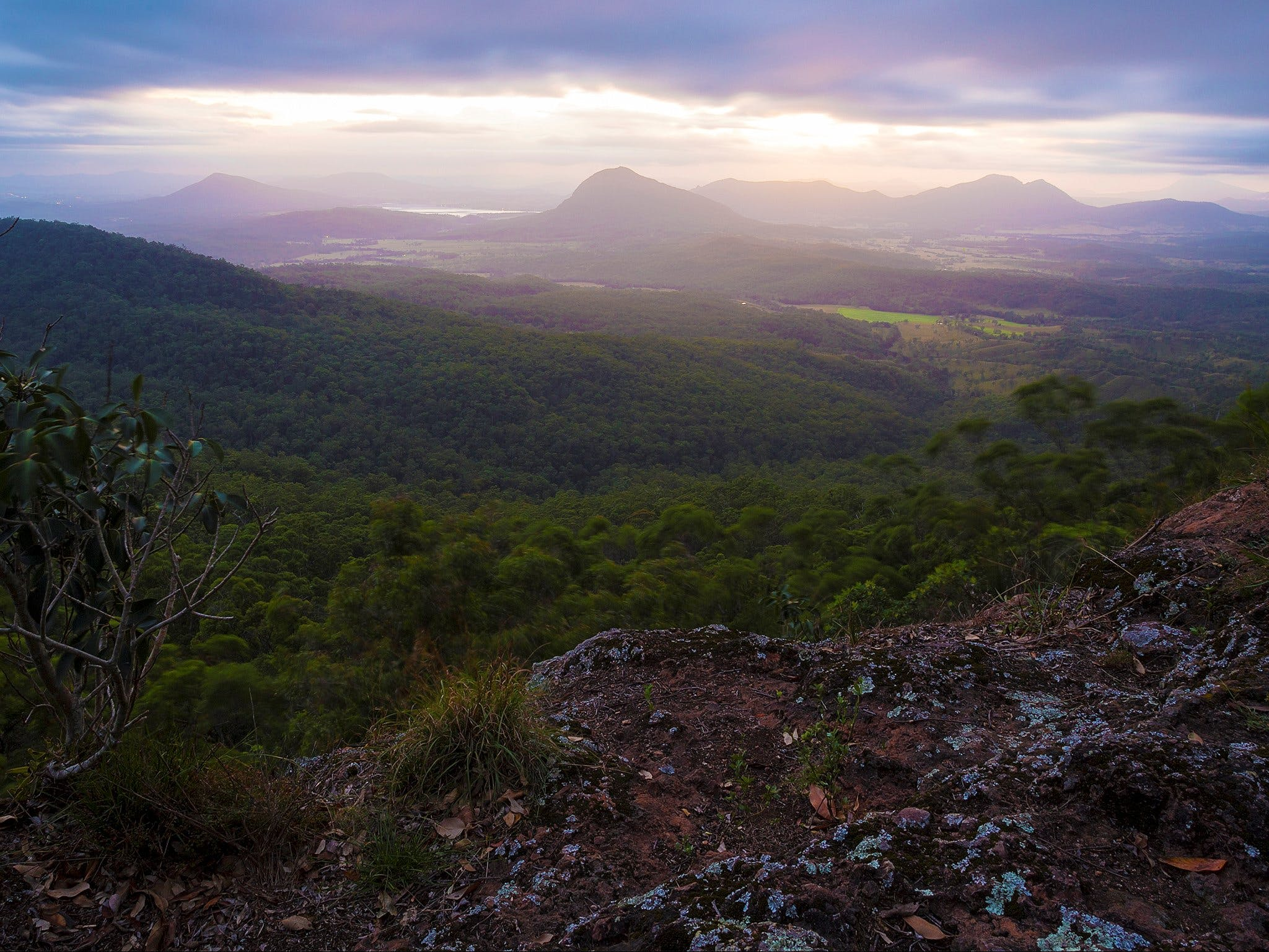 Cunninghams Gap and Spicers Gap Main Range National Park - Accommodation Directory