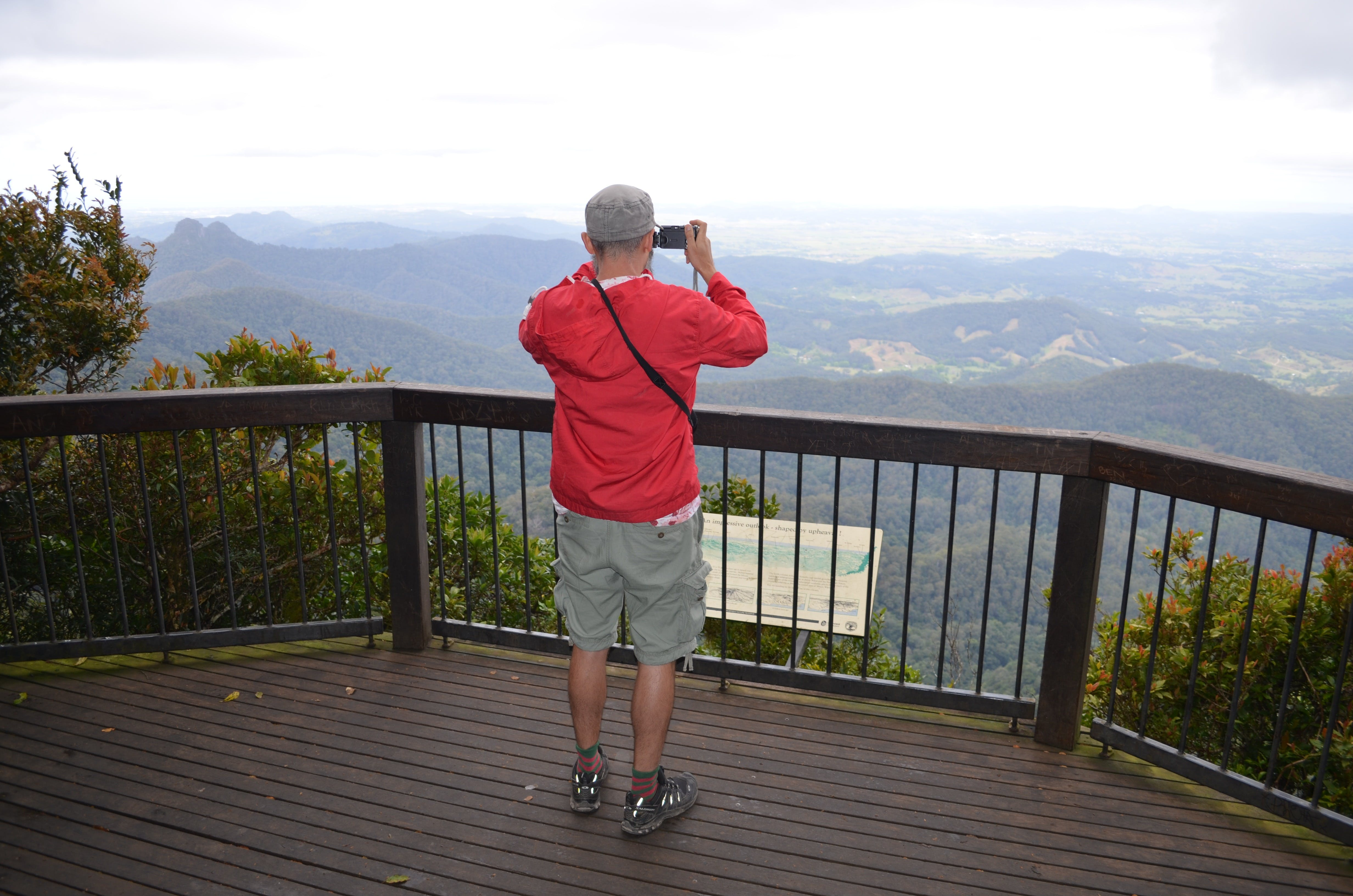 Best of All lookout track Springbrook National Park - Accommodation Directory