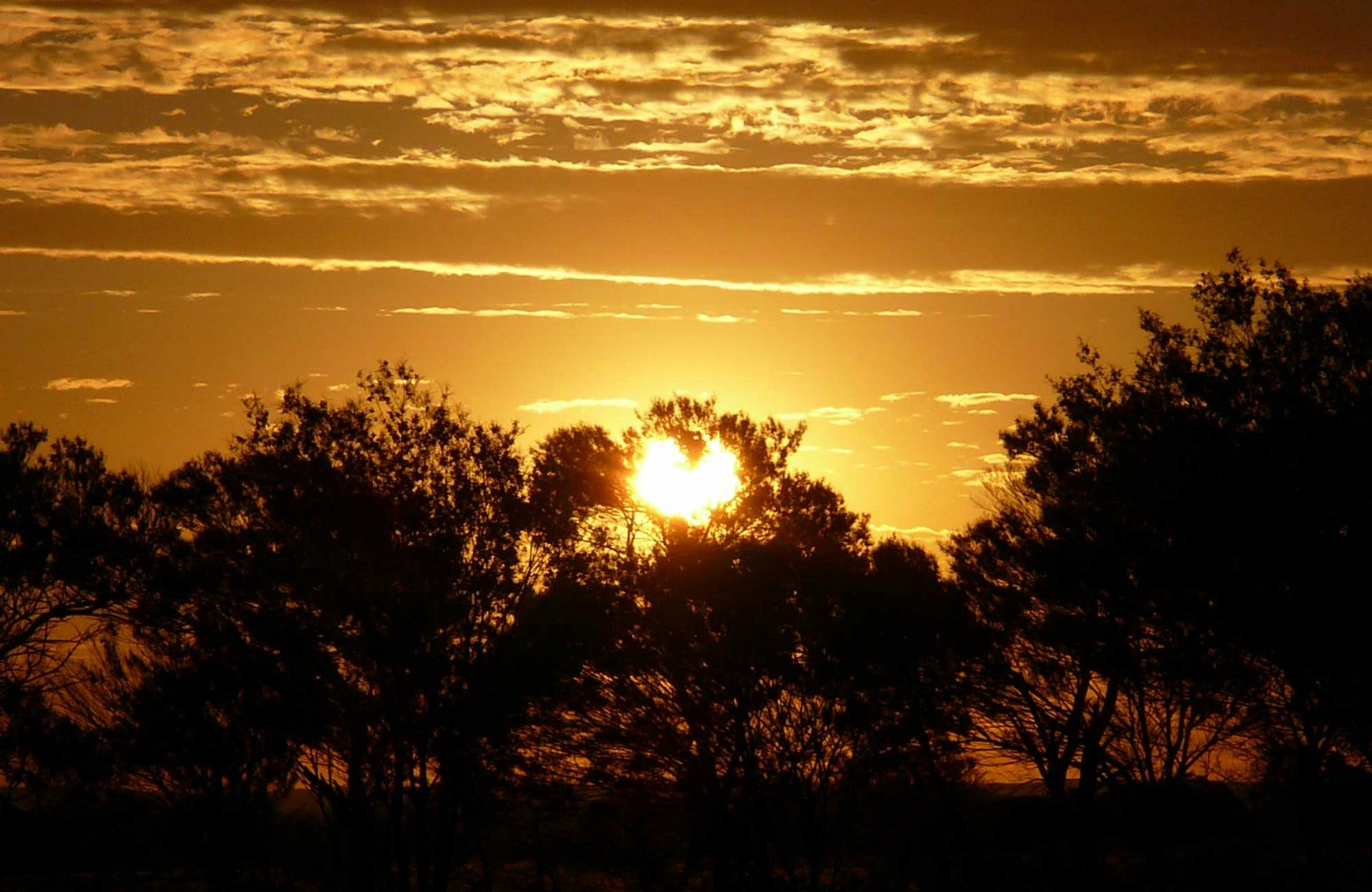 Paroo-Darling National Park - Accommodation Directory