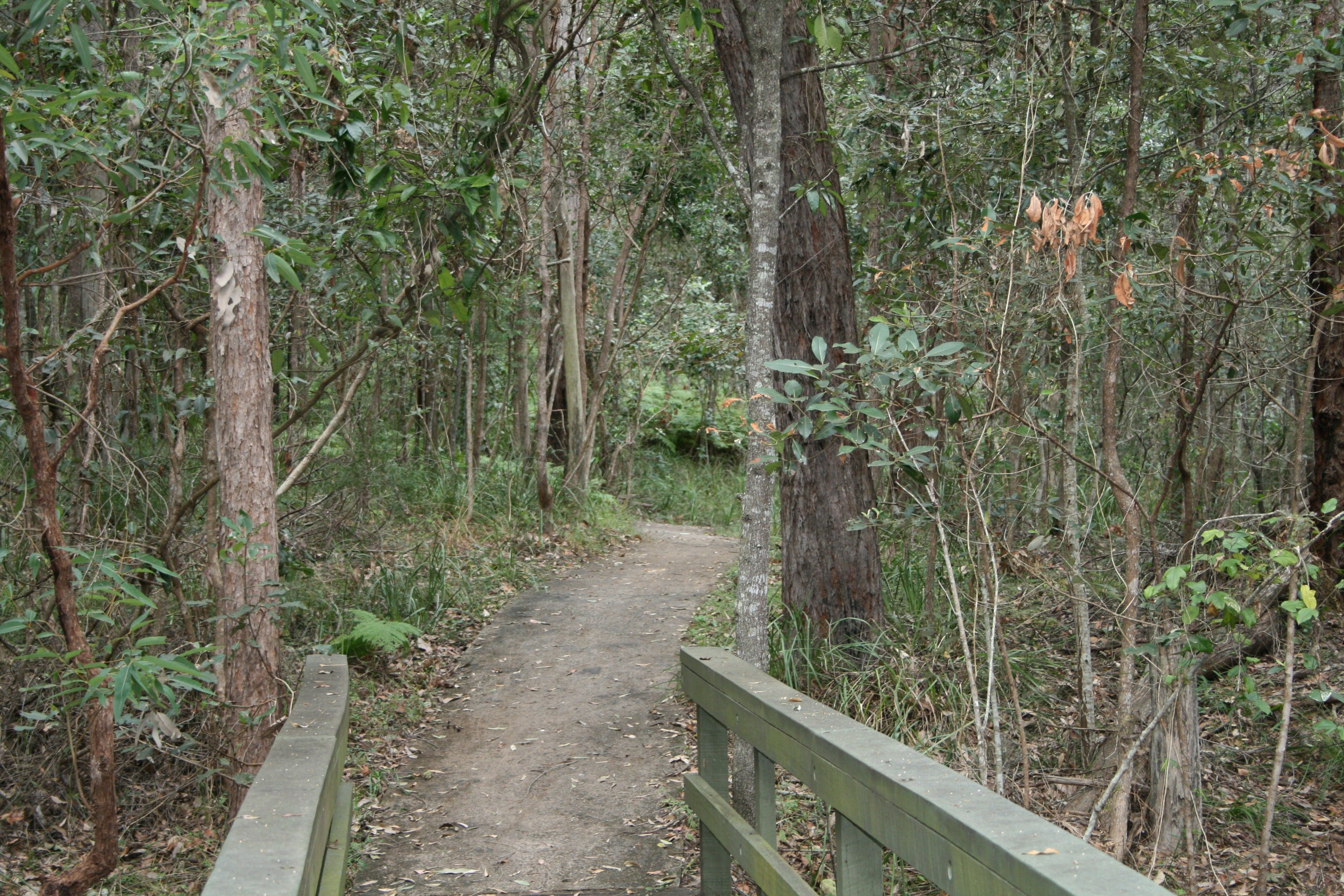 Springwood Conservation Park - Accommodation Directory