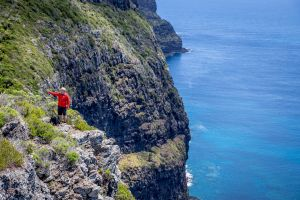 Seven Peaks Walk at Pinetrees Lord Howe Island - Accommodation Directory