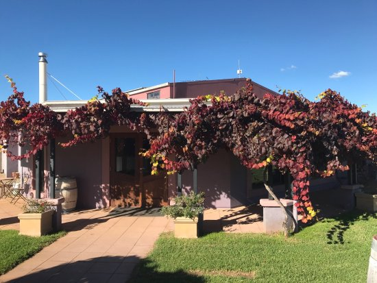 Jester Hill Wines - Accommodation Directory