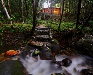 Daintree Cascades - Accommodation Directory