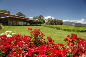 Balgownie Estate Vineyard Resort  Spa - Accommodation Directory