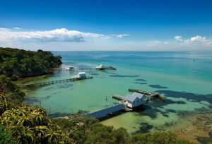 Bayplay Cottage And Portsea Apartments - Accommodation Directory